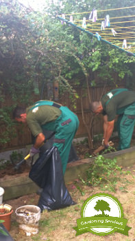 Stockport Garden Care Services